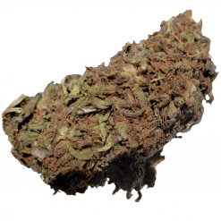 Medical CBD Hemp Flower For Sale Online Harlequin