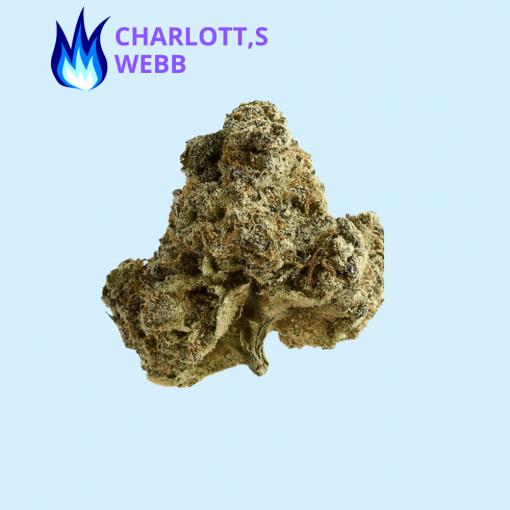 CHARLOTTE'S WEBB STRAIN CBD HEMP FLOWER