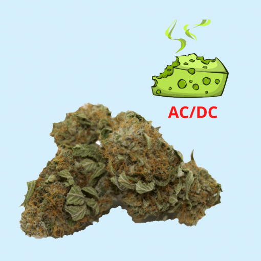 ACDC Strain CBD Hemp Flower