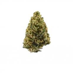 Northern Lights Premium Cannabis