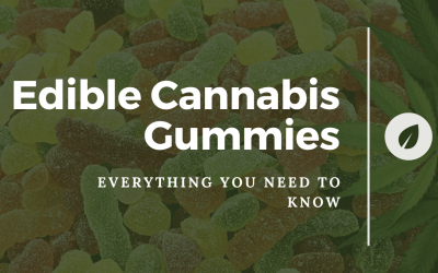 Edible Cannabis Gummies: Everything You Need to Know
