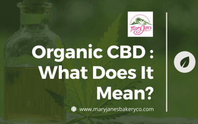Organic CBD : What Does It Mean?