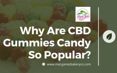 Edible Gummies: Why Are CBD Gummies Candy So Popular?